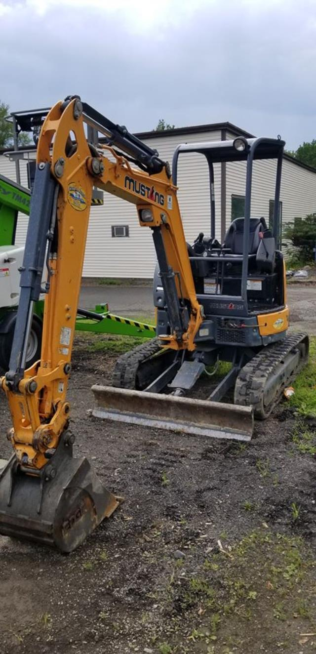 Where to find EXCAVATOR - MUSTANG 250Z in Old Town